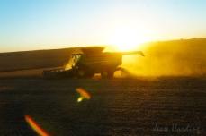 Harvest Rays